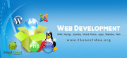 Web development services USA
